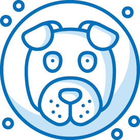 https://test-security-first.pantheonsite.io/sites/default/files/media/image/Dog-Icon.png